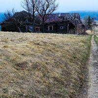 Krajobraz - 2008