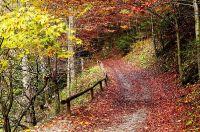 Jesienią góry są najszczersze